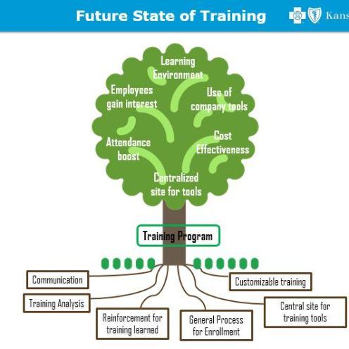Future Representation of Training Program